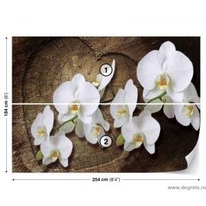 Fotografie tapet Orhidee alba