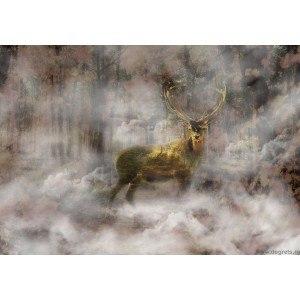 Fotografie tapet Caprioara in lumea viselor
