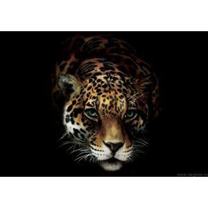 Fotografie tapet Jaguar L 1