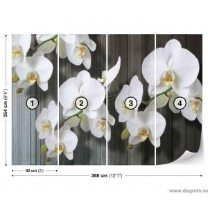 Fotografie tapet Orhidee Alba 2 XL