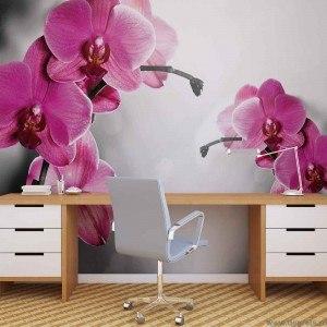 Fotografie tapet Orhidee ticlam 1 L 1
