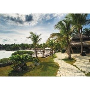 Fotografie tapet Tropic 1