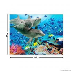 Tablou Canvas Delfini