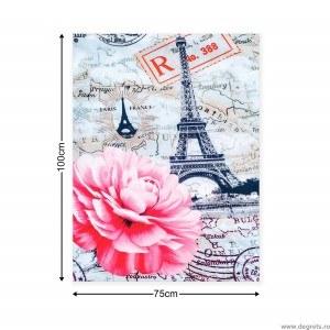 Tablou Canvas Paris - bujori