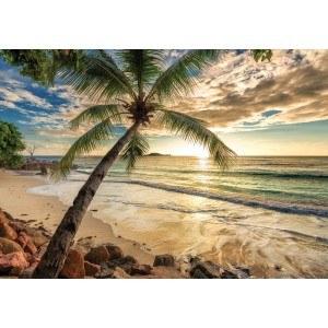 Fotografie tapet Bahamas XL