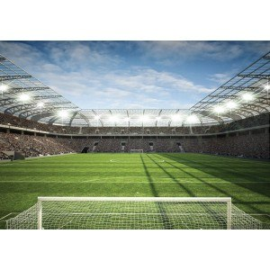 Fotografie tapet Stadion 2 XL