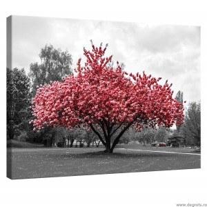 Tablou Canvas Culoare Roz