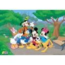 Fotografie tapet Mickey Mouse si prietenii 2