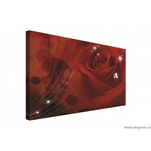 Tablou Canvas Trandafir 3D Abstractie