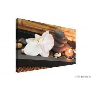 Tablou Canvas Relaxare 1