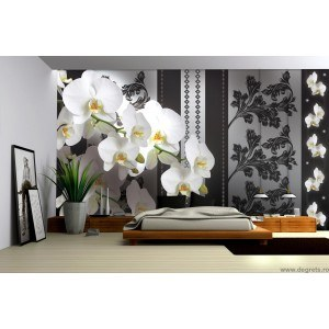 Fotografie tapet Orhidee eleganta 1 3D XL
