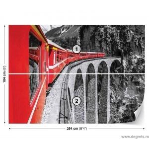 Fotografie tapet Tren in munti