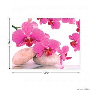 Tablou Canvas Orhidee Zen 1