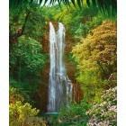 Fotografie tapet Cascada tropica