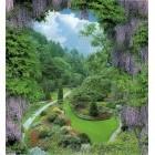 Fotografie tapet Lilac