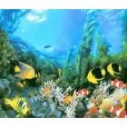 Fotografie tapet Împaratia de sub apa