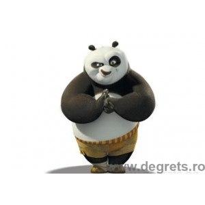 Fotografie tapet Kung Fu Panda