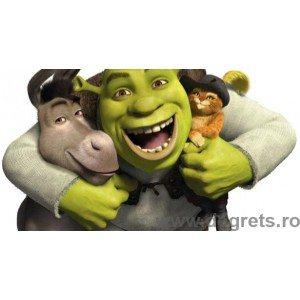 Fotografie tapet Shrek