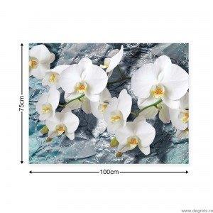 Tablou Canvas Orhidee 1