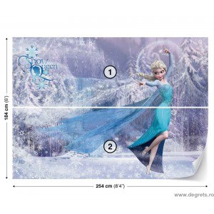 Fotografie tapet Elsa 3