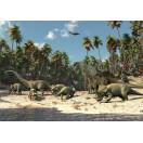 Fotografie tapet Dinozauri 3D