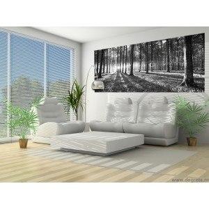 Fotografie tapet Padure in negru si alb Vlies