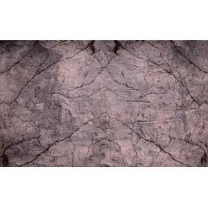 Fotografie tapet Textura lemn