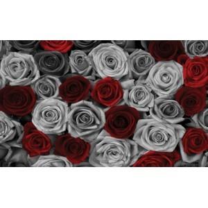 Fotografie tapet Trandafiri rosu-gri L