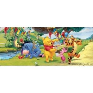 Fotografie tapet Ziua de nastere Winnie the Pooh S Vlies