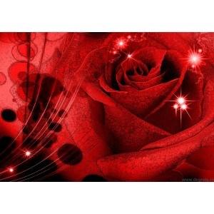 Fotografie tapet Trandafir abstractie 3D