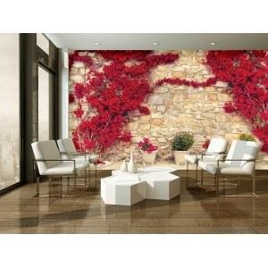 Fotografie tapet Perete cu flori rosii 1