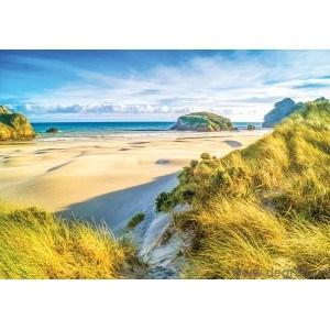 Fotografie tapet Plaja Tropicala 4
