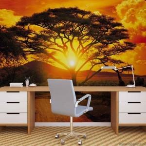 Fotografie tapet Apus in Africa