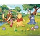 Fotografie tapet vinil premium Disney Winnie the Pooh