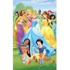 Fotografie tapet vinil premium Printesa Disney