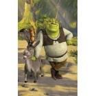 Fotografie tapet vinil premium Shrek