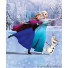 Fotografie tapet vinil premium Disney Frozen 2