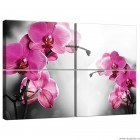 Set Tablou Canvas 4 piese Orhidee Ticlam 1