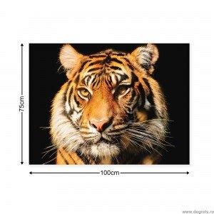 Tablou Canvas Tigru 2 3D