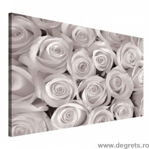 Tablou Canvas Buchet de trandafiri alb