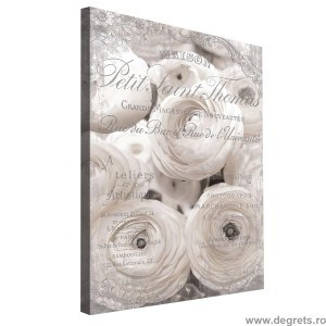 Tablou Canvas Trandafiri Albi - Vintage 3D L