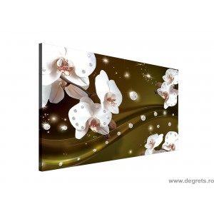 Tablou Canvas Abstractie Orhidee 4 3D L