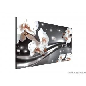 Tablou Canvas Abstractie Orhidee 3 3D L