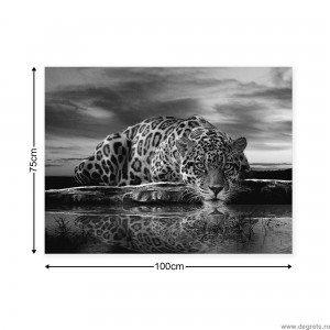 Tablou Canvas Leopard 1 L