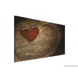 Tablou Canvas Inima 1
