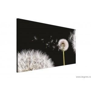 Tablou Canvas Papadie 1 3D L