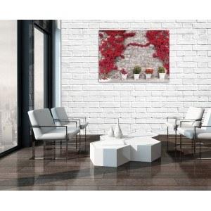 Tablou Canvas Perete cu flori rosii 1 L
