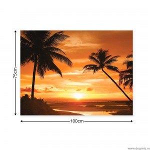 Tablou Canvas Palmier - apus L