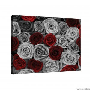 Tablou Canvas Trandafiri rosii - gri