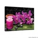 Tablou Canvas Orhidee 4 L
